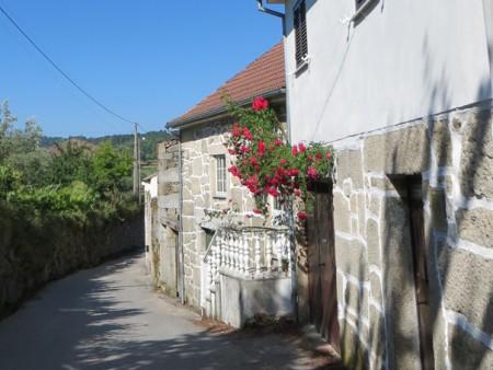Casa-Ospelia-Viseu-Portugal-00